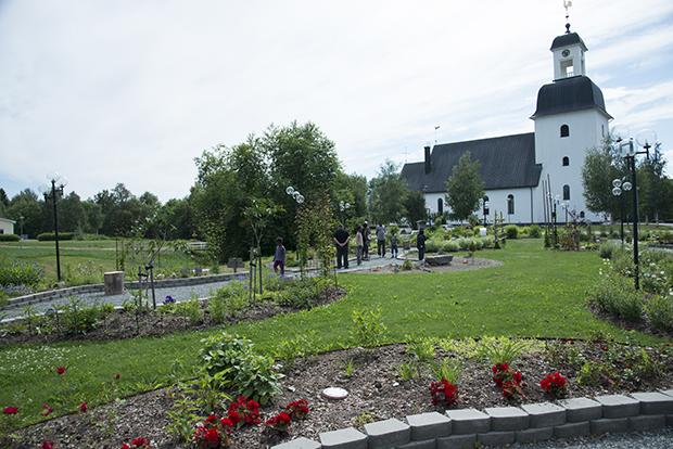 pilgrimsträdgård1